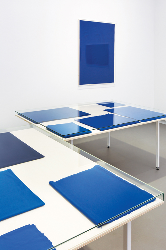 Remco Torenbosch,NL: Europees blauw